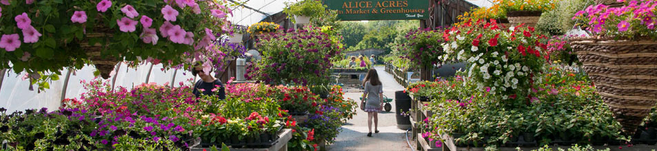Alice Acres Farm Market